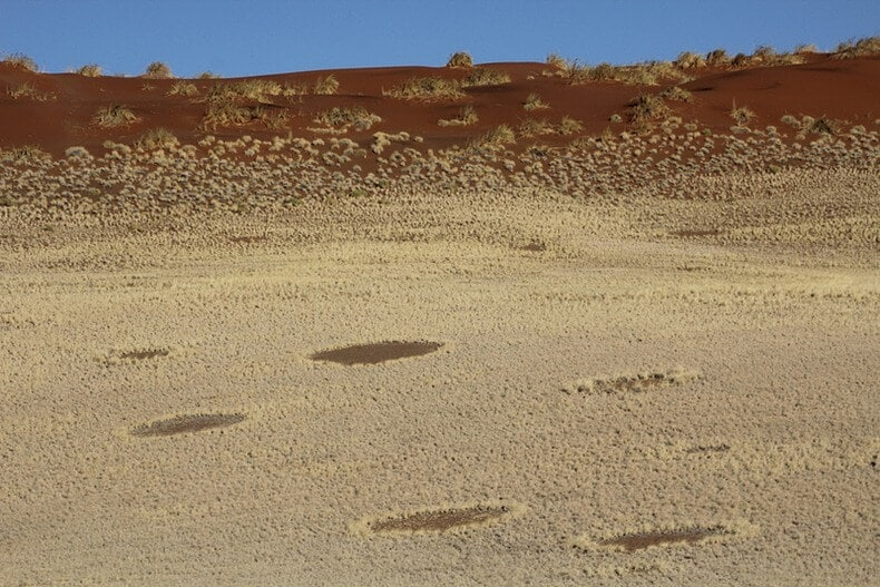 Cercles des Fées, Namibie, Afrique