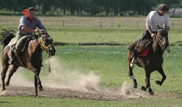 Visiter un ranch argentin avec les gauchos au départ de Buenos Aires