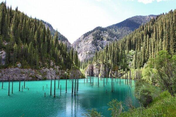 La forêt submergée du lac Kaindy au Kazakhstan