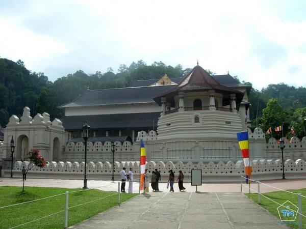 Les 15 choses incontournables à faire au Sri Lanka