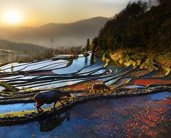 Les paysages d'Asie mis en lumière par un photographe