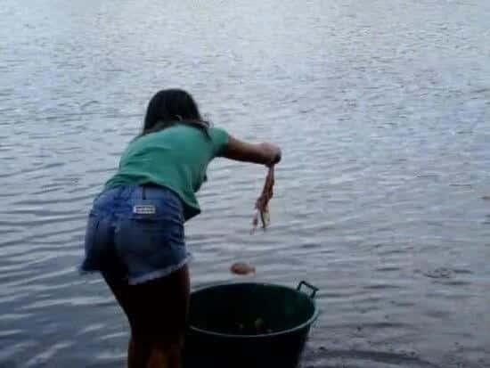 Comment pêcher des piranhas facilement ?