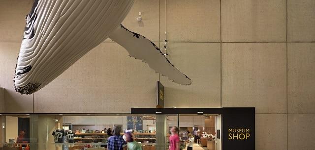 Queesland Cultural Centre Brisbane