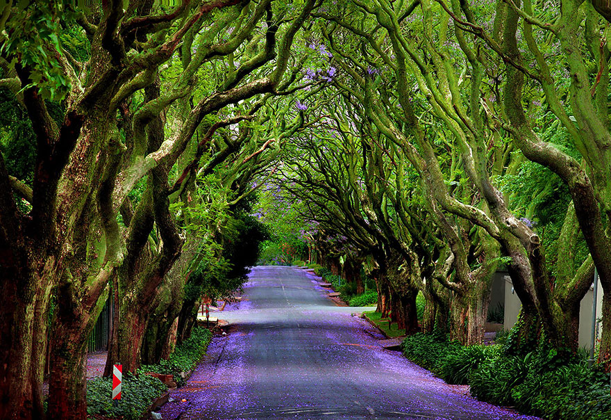 Sentiers, chemins et routes magiques, superbes photos