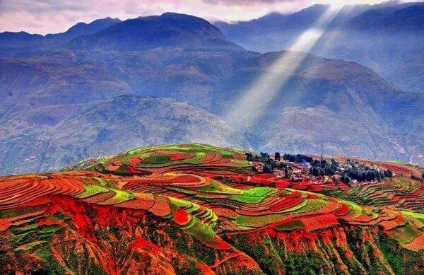 Les terrasses en terres rouges de Dongchuan