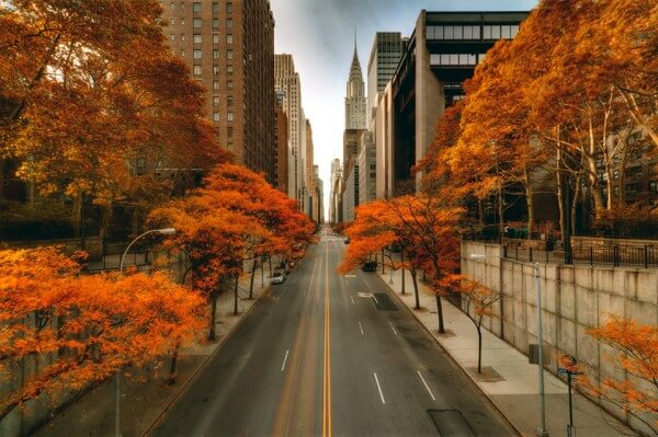 automne-new-york-city