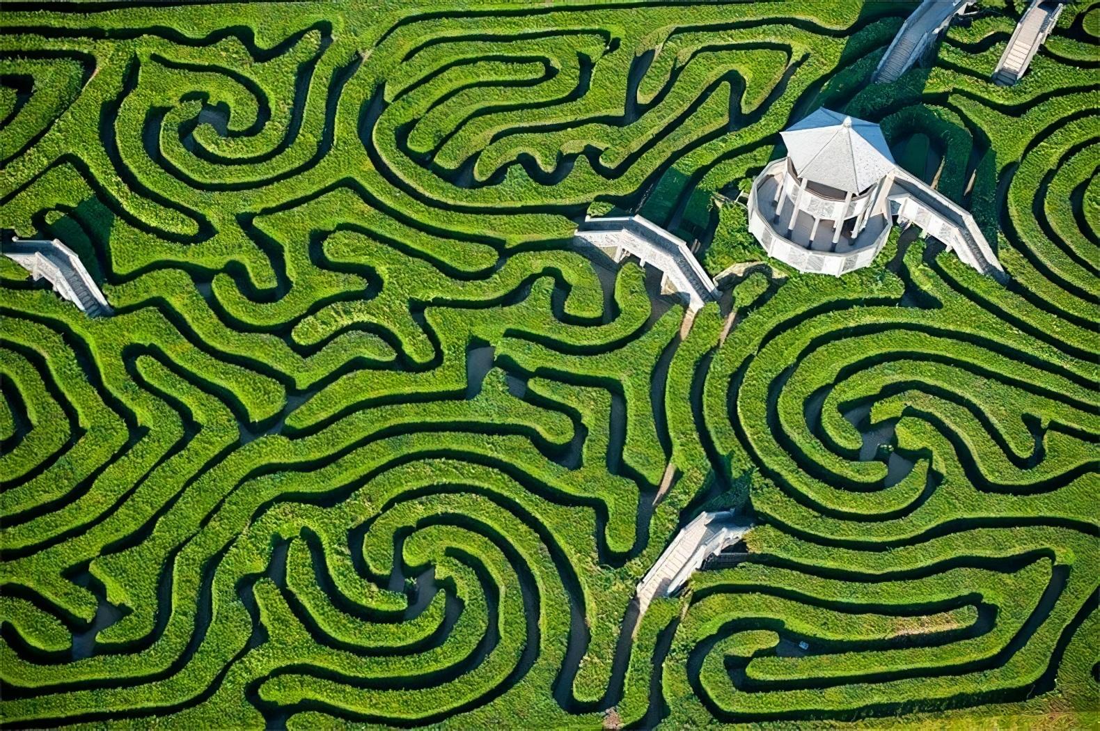 Le labyrinthe végétal de Longleat