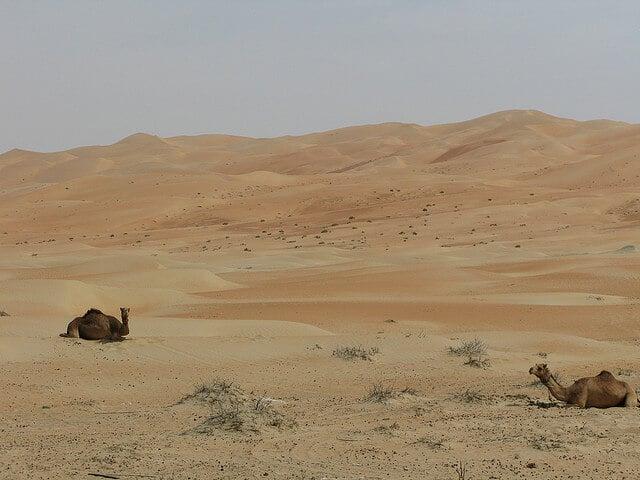 Oasis de Liwa à Abu Dhabi