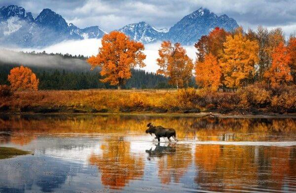 27 endroits exquis pour voir les couleurs éclatantes de l'automne