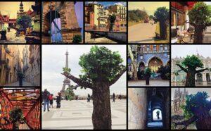 Vous n'êtes pas un arbre alors voyagez ! You are not a tree so travel, Momondo