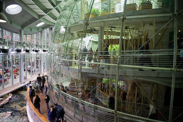 California Academy of Sciences à San Francisco