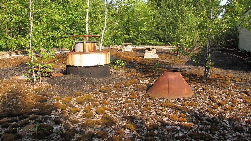 Igor Lishilenko, Pripiat, Tchernobyl, nature prospère