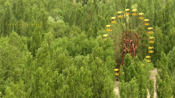 Quand la nature reprend ses droits à Tchernobyl