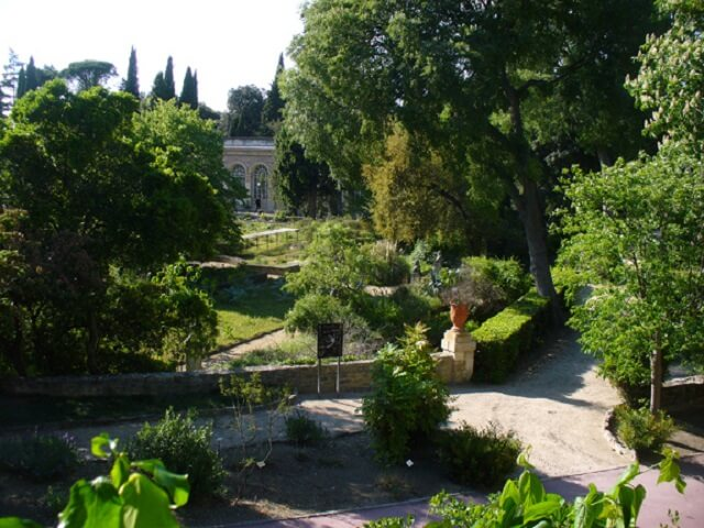 12 choses incontournables faire montpellier guide for Arceaux de jardin