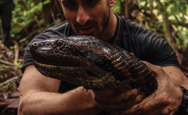 Un homme va se faire avaler par un anaconda dans l'émission Eaten Alive