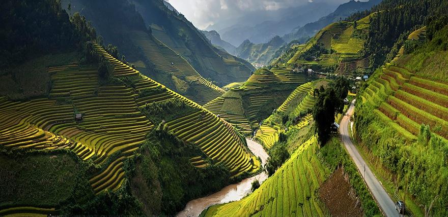 Photos de rizières en terraces ressemblant à du verre brisé
