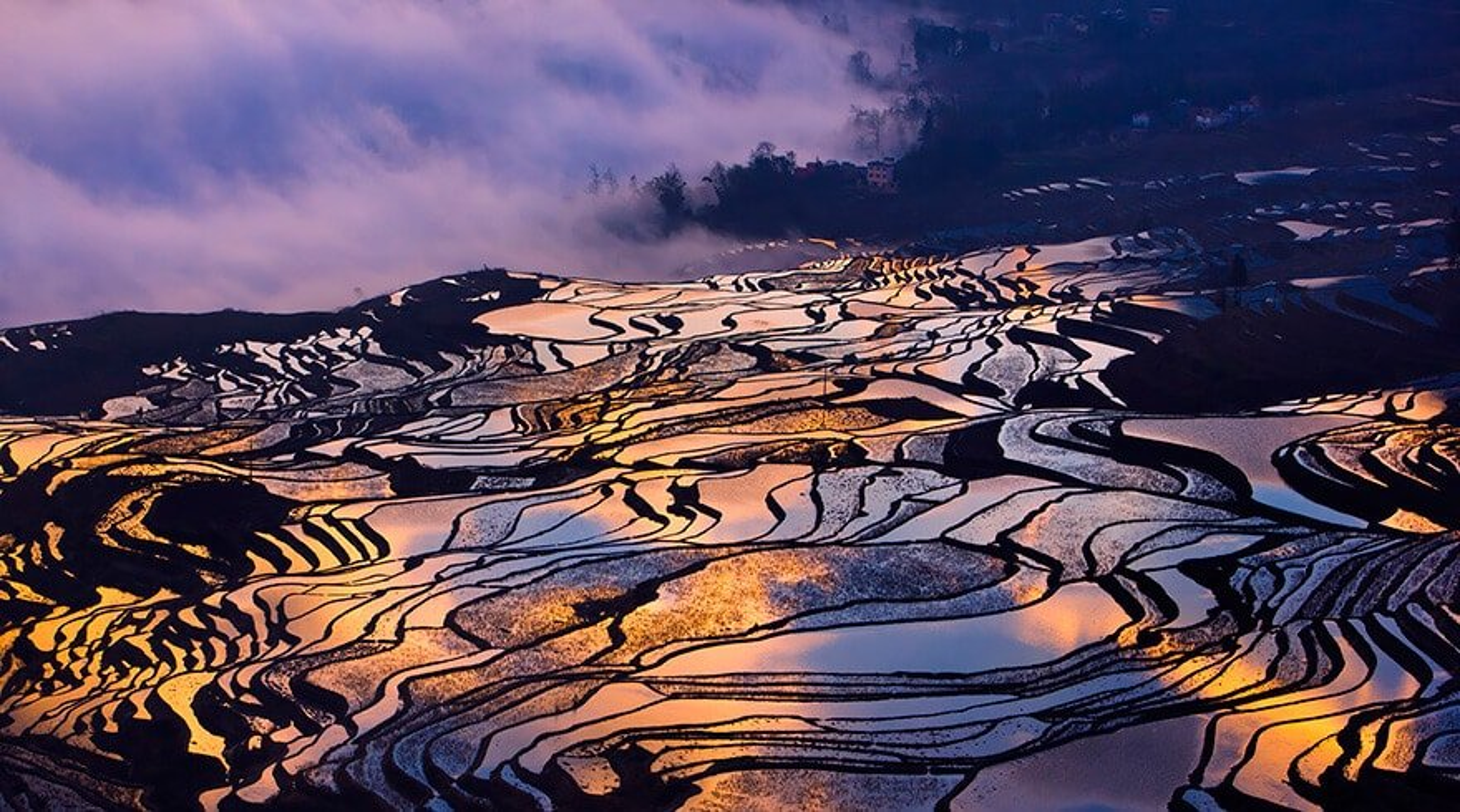 28 photos de rizières ressemblant à des miroirs brisés