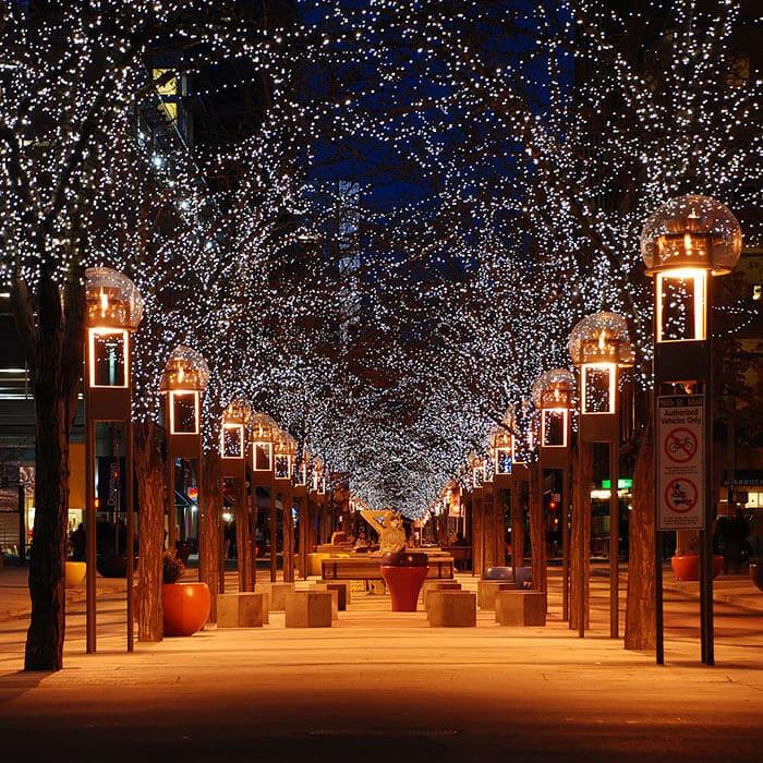 Belles rues ombragées fleurs arbres