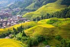 Guilin rizieres de Longji