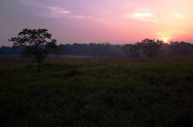 Coucher du soleil, Chitwan