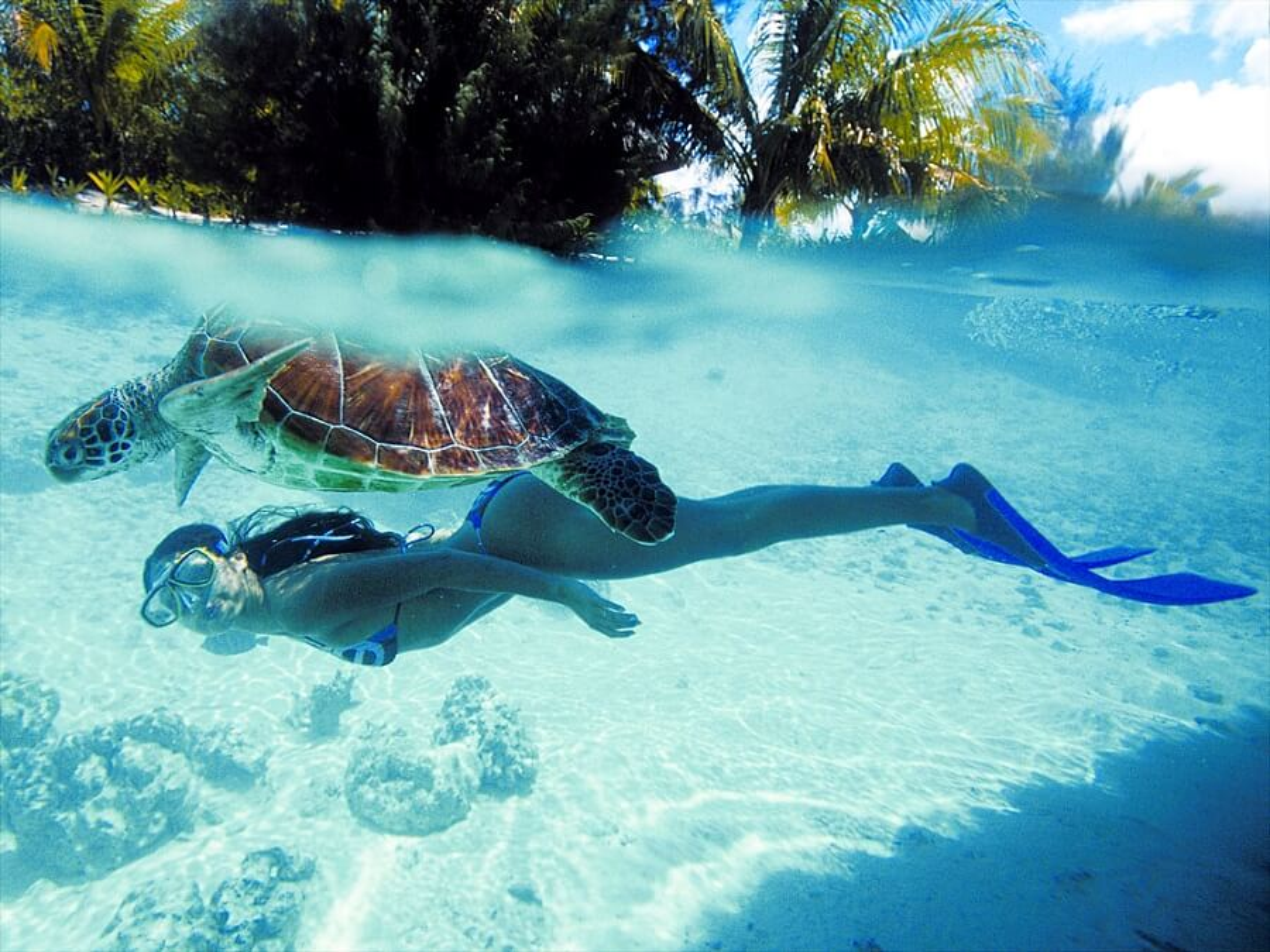 25 superbes photographies de Bora Bora