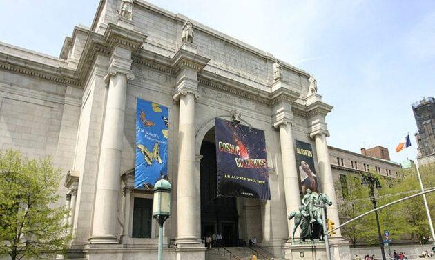 Visiter le musée d'Histoire naturelle à New York