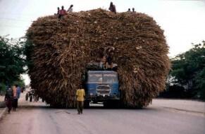 véhicules surchargés monde, photos