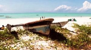 Voyage en Tanzanie, kitesurf, safari, dauphins