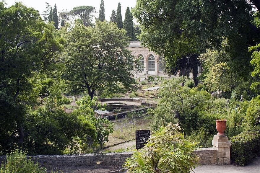Jardin des Plantes, Faculté de Médecine, Montpellier