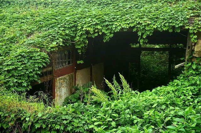 Shengsi, Gouqi, île, village abandonné, Chine