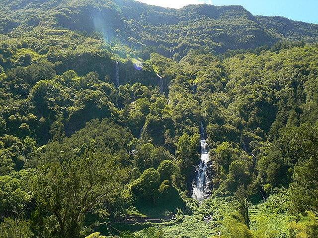 Cascade du Voile de la Mariee, La Réunion