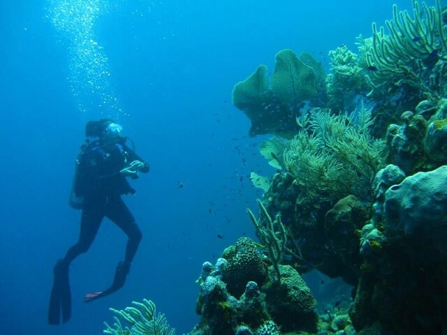 villa Dunbar Rock, Honduras, Caraïbes