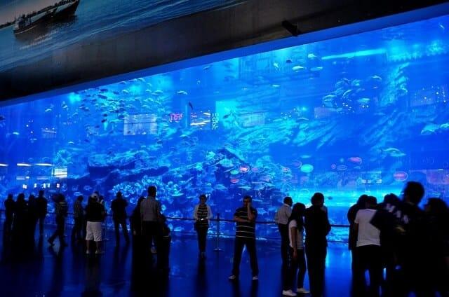 Aquarium, The Lost Chambers-dubai