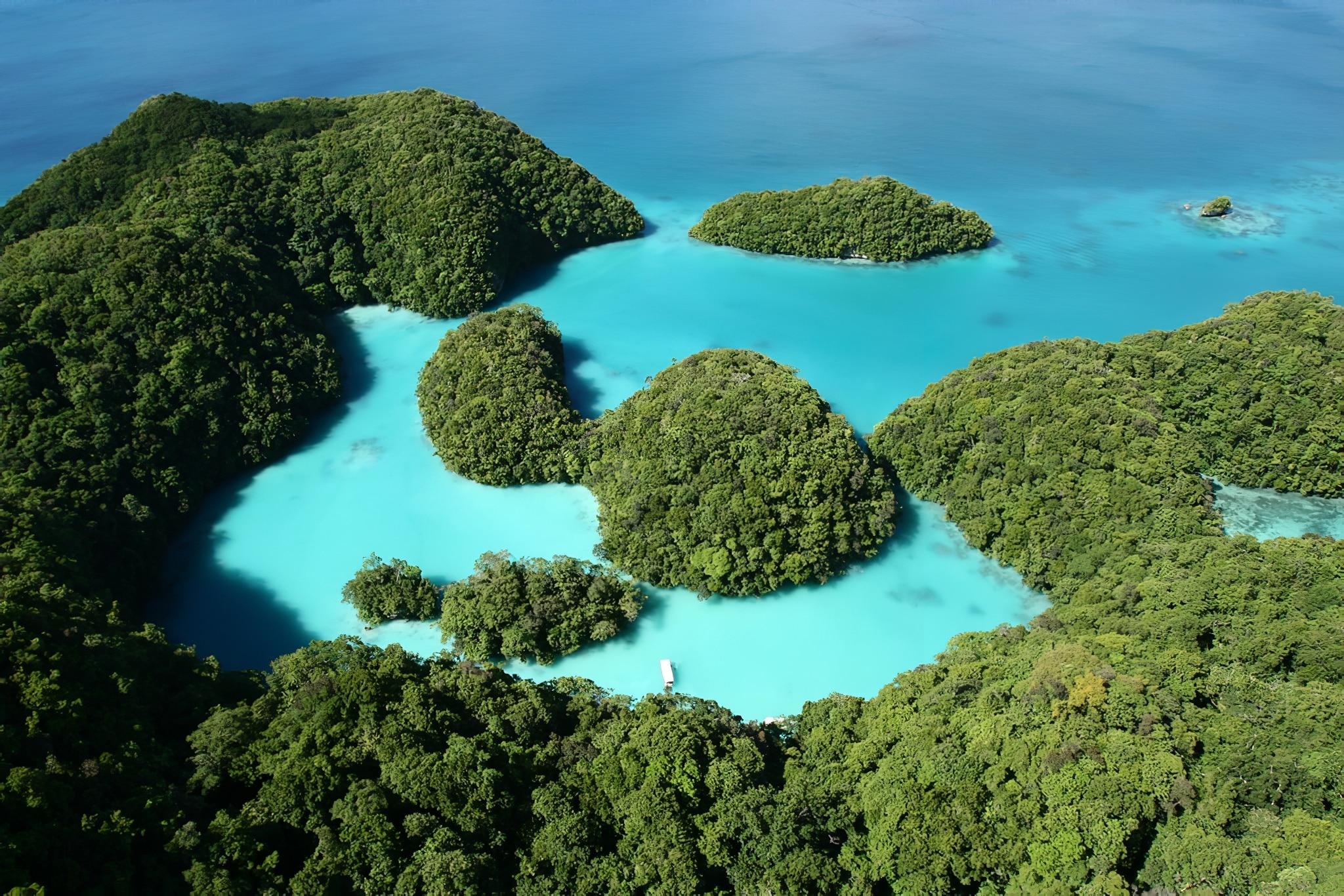 Des photos éblouissantes de Palaos, sanctuaire marin du Pacifique
