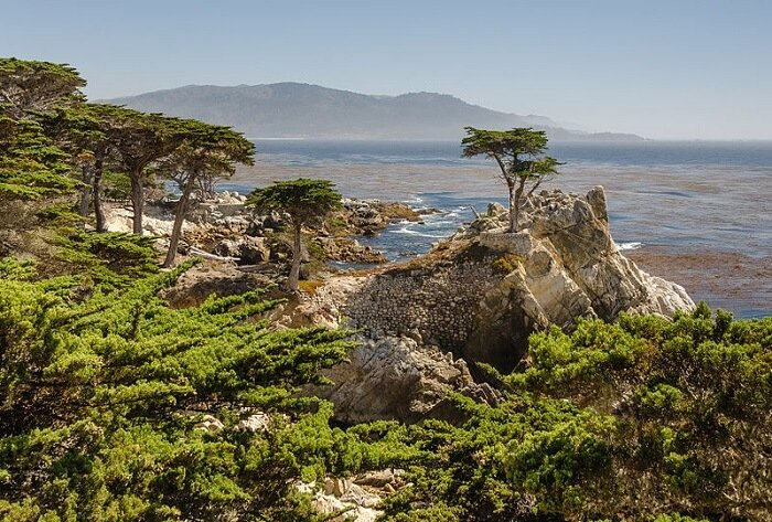 California State Route 1, Lone Cypress, 17 mile drive