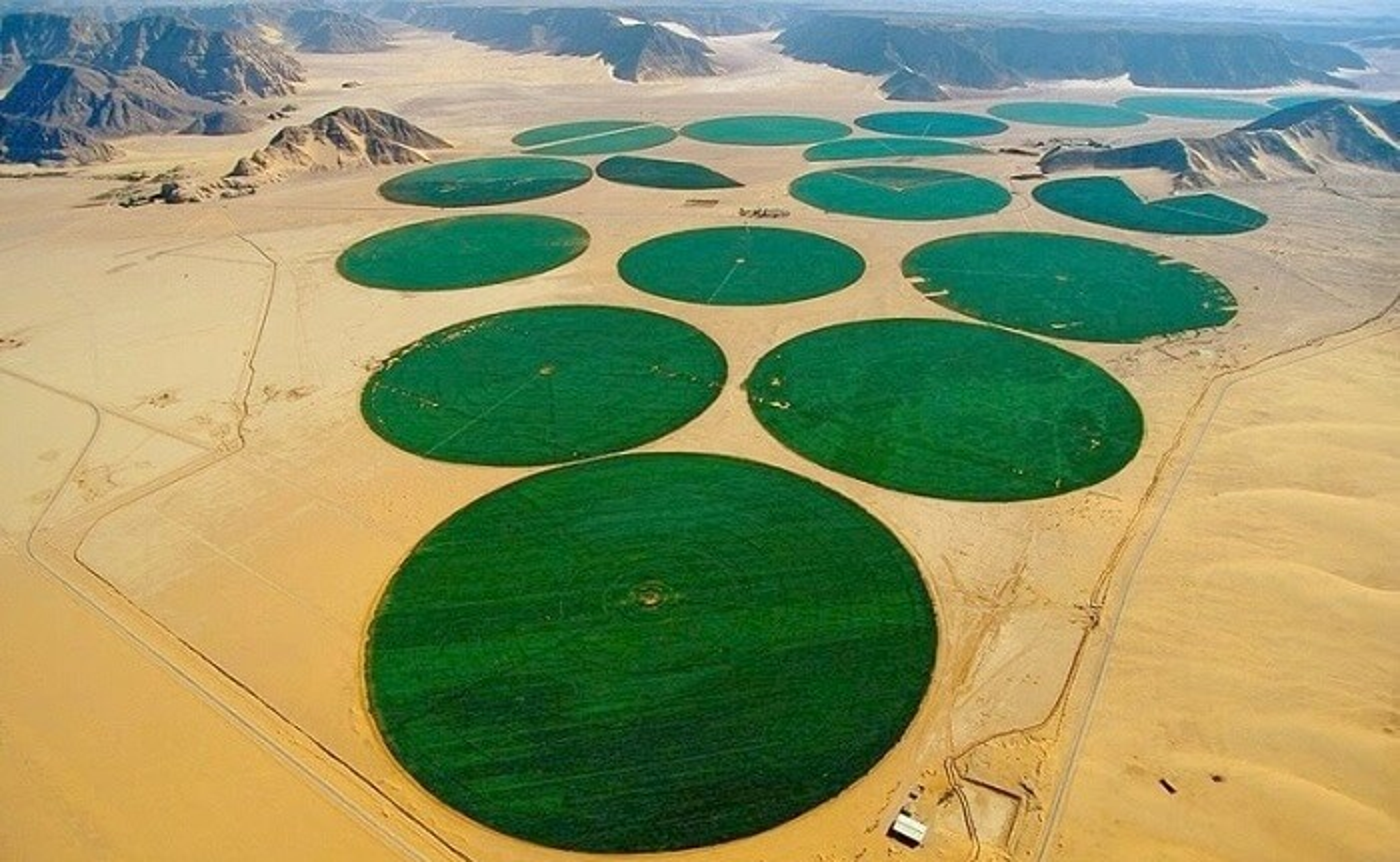 Des terres agricoles en plein désert de Wadi Rum en Jordanie