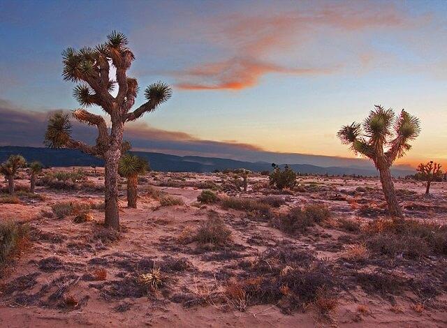 route 66, désert de Mojave