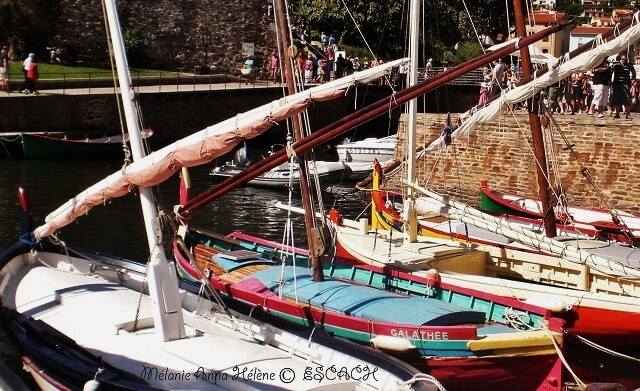 collioure-barques