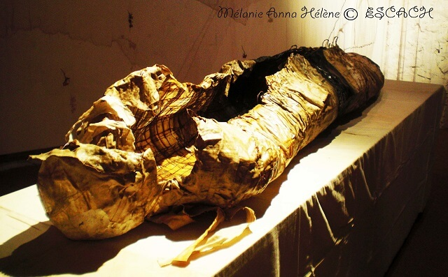 collioure-chateau-momie