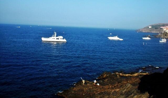 collioure-crique-mer