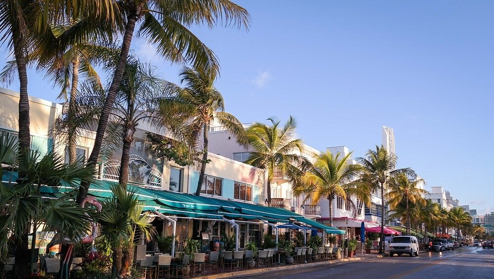 Ocean Drive, Miami, Palmiers