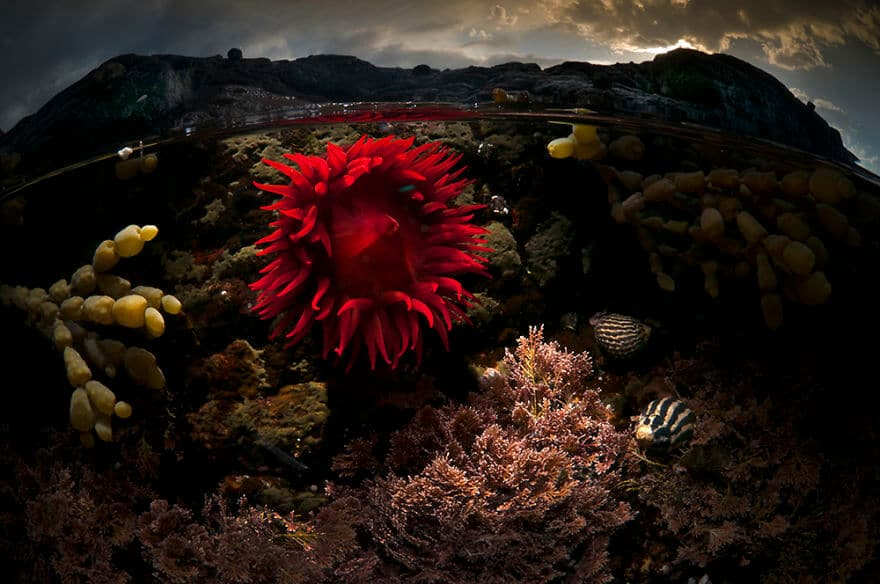 over-under-water-photography