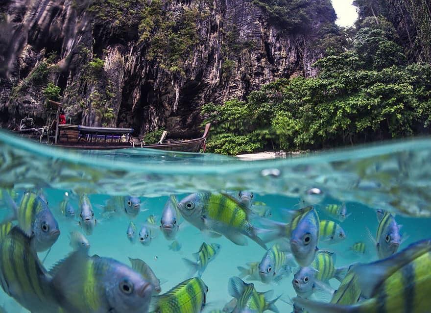 over-underwater-photography-3