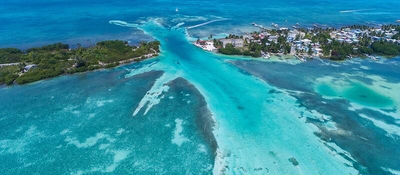 Cayes du Belize, Coraux