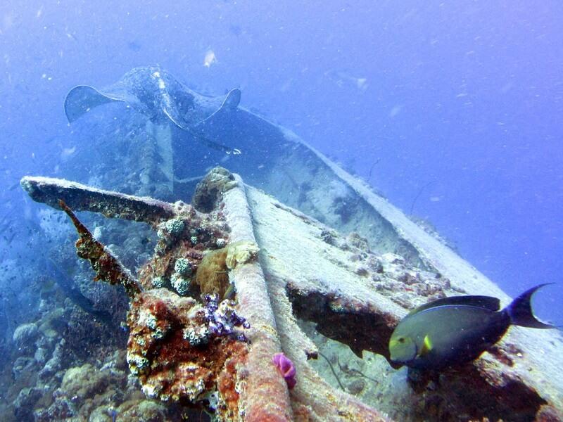 Epave du SS Yongala, Queensland, Australie