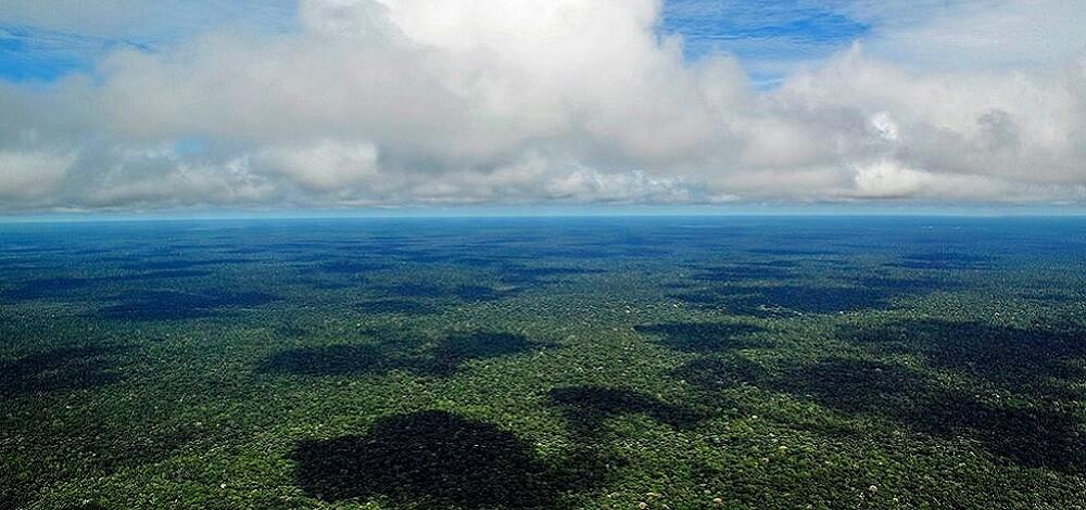 foret-amazonienne-merveilles