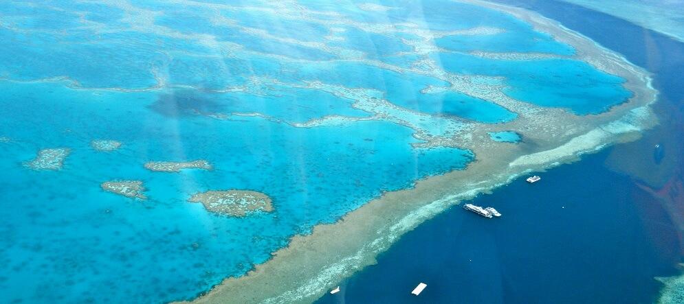 Grande barrière de Corail, Merveille