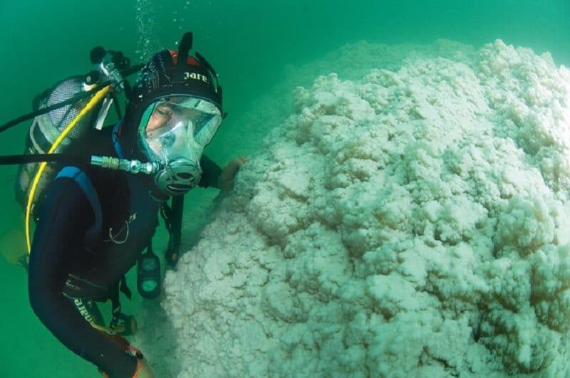 Mer morte, plongée, Jordanie
