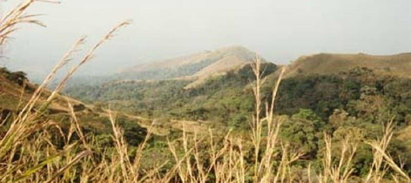 Mont Nimba, Réserve africaine