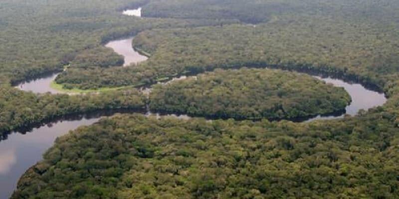 Parc National, Salonga
